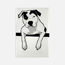 Pit Bull T-Bone Graphic Magnets