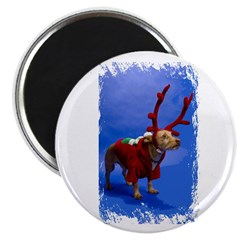 reindeer dog 2.25