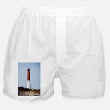 Cute Barney Boxer Shorts