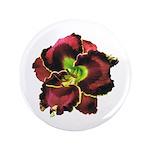 Dark Purple Daylily 3.5