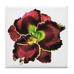 Dark Purple Daylily Tile Coaster