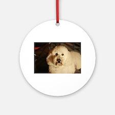 flufy white dog at night Round Ornament