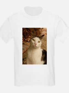 cat has green wywa T-Shirt