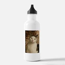 cat has green wywa Water Bottle