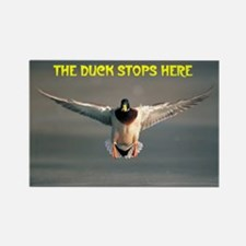 MALLARD DRAKE Rectangle Magnet