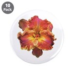 Coral Red Daylily 3.5