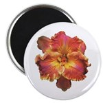 Coral Red Daylily Magnet