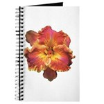 Coral Red Daylily Journal