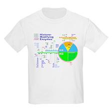 Nucleosome02 T-Shirt