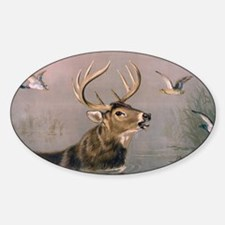 Unique Whitetail deer antlers Sticker (Oval)