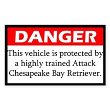 Attack Chesapeake Bay Retriever Decal