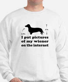 My Wiener on the Internet -Jumper