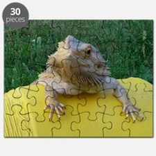 Funny Bearded dragon Puzzle
