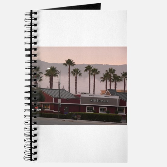palm trees at shopping center with santa C Journal