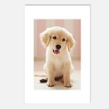 Golden Retriever Pup Postcards (Package of 8)