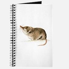 Shrew Journal