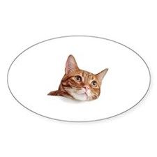Cat Longing Oval Decal