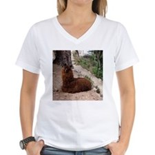 CUTE ALPACA Shirt