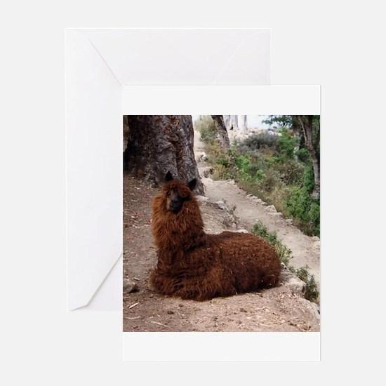 CUTE ALPACA Greeting Card