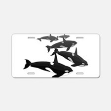 Orca Whale Art Gifts Aluminum License Plate
