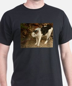 quizzical bicolor cat concentrating T-Shirt