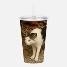 quizzical bicolor cat Acrylic Double-wall Tumbler