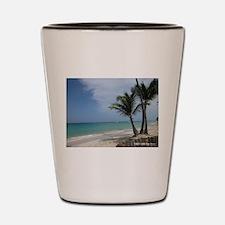 Punta Cana Playa Bavaro Shot Glass