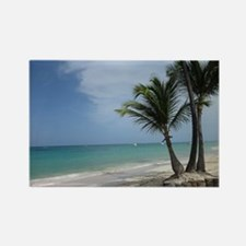 Punta Cana Playa Bavaro Magnets
