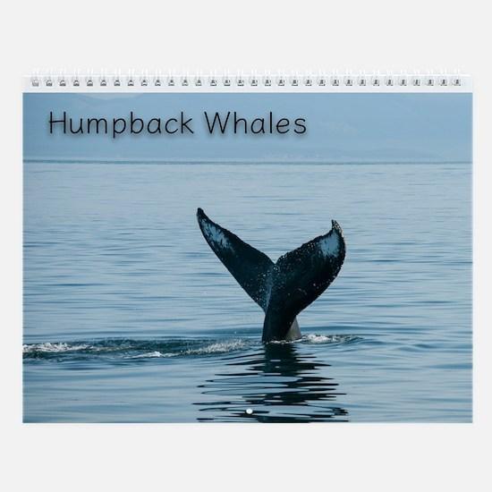 Wall Calendar-Humpback Whales