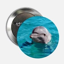 """Dolphin Blue Water 2.25"""" Button"""