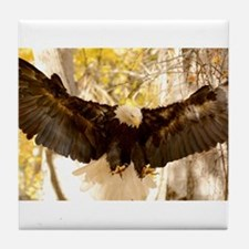Bald Eagle in Flight Tile Coaster