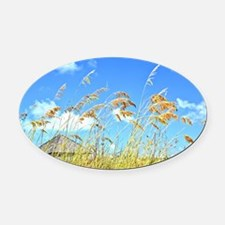 Caribbean Breezes and Beaches Oval Car Magnet