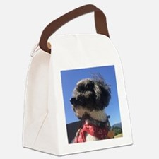 Cool Kimba Canvas Lunch Bag