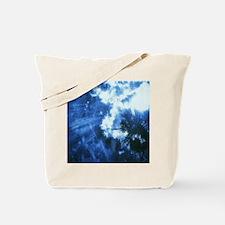 Palm Tree Sunburst Denim Tote Bag