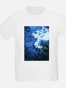 Palm Tree Sunburst Denim T-Shirt