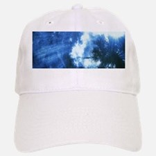 Palm Tree Sunburst Denim Baseball Baseball Baseball Cap