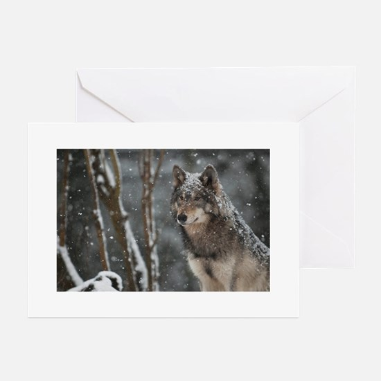Snowy Lone Wolf Greeting Cards