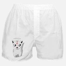 Unique Kitteh Boxer Shorts