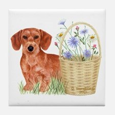 Wire Haired Dachshund Decorative Tile