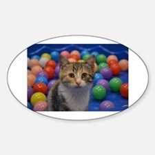 Kitty Ball Pit Decal