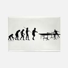 Pong Evolution Magnets