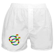 Rainbow Gay Symbol Boxer Shorts