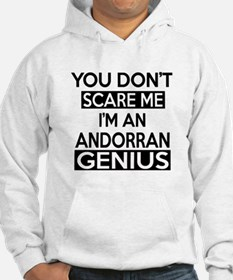 You Do Not Scare Me I Am Andorra Hoodie