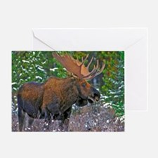Unique Moose canada Greeting Card