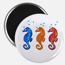 Three seahorses Magnets