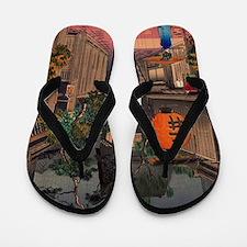 Funny Asia Flip Flops