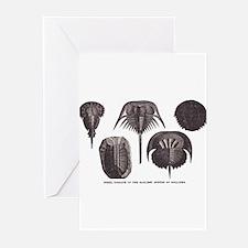 Trilobites Greeting Cards