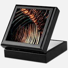Houston Museum of Natural Science Keepsake Box