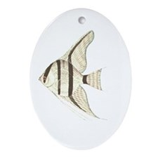 Angelfish Oval Ornament