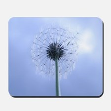 Making Wishes Mousepad